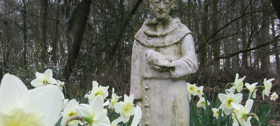 Franciscus Stoutenburg