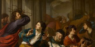 Tempelreiniging Theodoor Rombouts